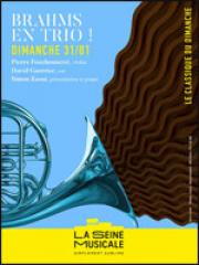 Consulter les détail du spectacle : BRAHMS EN TRIO - La Seine Musicale127425