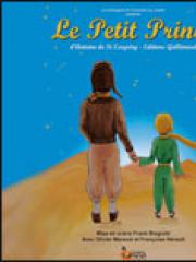 Theatre spectacle : LE PETIT PRINCE - THEATRE DE L'EMBELLIE