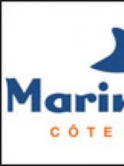 Consulter les détail du spectacle : MARINELAND + AQUASPLASH - MARINELAND126978