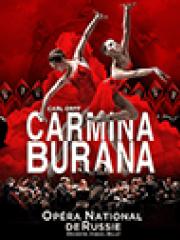 Consulter les détail du spectacle : CARMINA BURANA - PALAIS DES CONGRES ESPACE MISTRAL140571