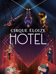 Consulter les détail du spectacle : CIRQUE ELOIZE - CENTRE CULTUREL CEC - YERRES141829