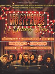 Consulter les détail du spectacle : LES COMEDIES MUSICALES - LA SALLE DES FETES - BORD142648