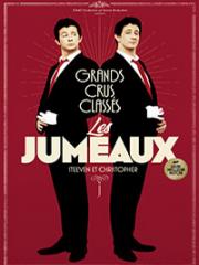 Consulter les détail du spectacle : LES JUMEAUX - THEATRE SEBASTOPOL - LILLE141773
