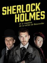 Consulter les détail du spectacle : SHERLOCK HOLMES ET LE MYSTERE - LA MERISE - TRAPPE145519