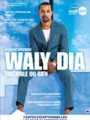 Consulter les détail du spectacle : WALY DIA - SUMMUM138152