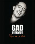 Theatre spectacle : GAD ELMALEH PAPA EST EN HAUT