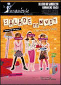 Theatre spectacle : SALADE DE NUIT