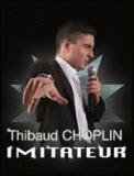 Theatre spectacle : Y\'EN AURA POUR TOUT LE MONDE AVEC THIBAUD CHOPLIN