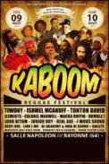 Theatre spectacle : KABOOM REGGAE FESTIVAL 2013